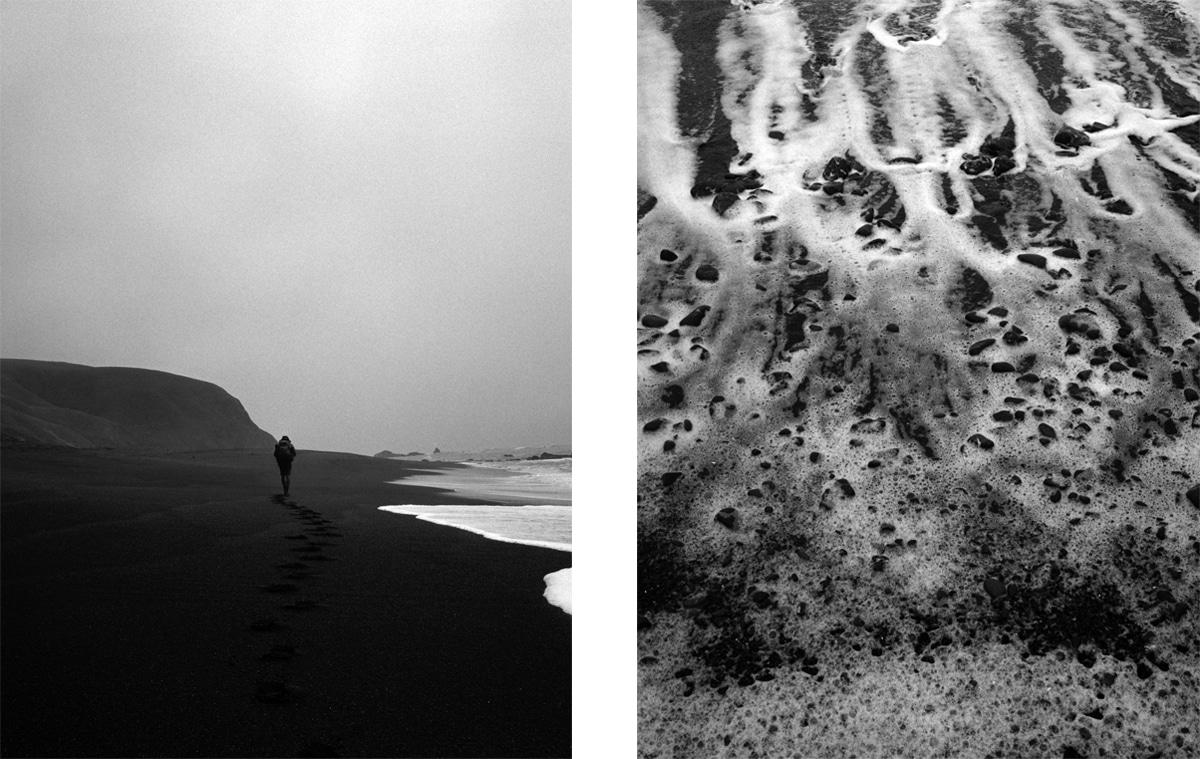 Carson Lancaster Delphian Gallery Lost Coast